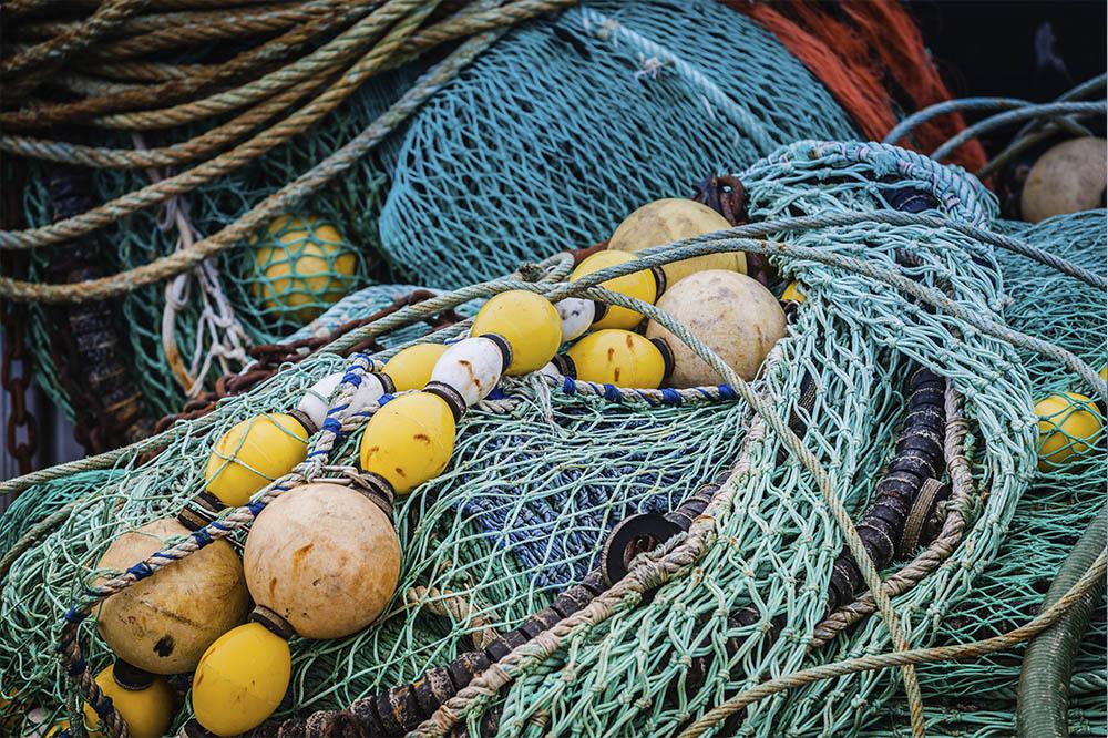 Aquaculture FAQs